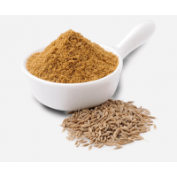 Cumin Powder (Raw) 100 gm